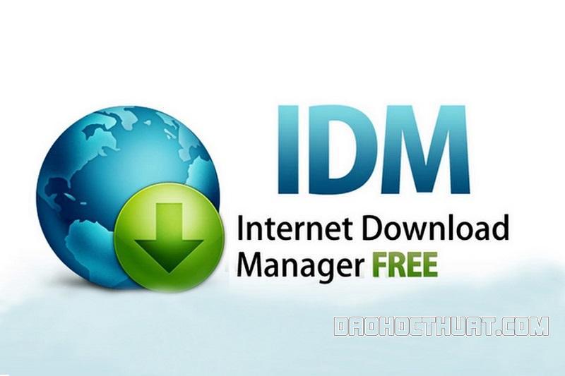 IDM là gì?