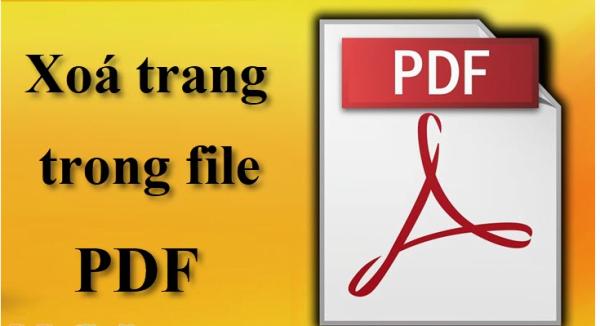 Cách xóa trang trắng trong PDF bạn nên biết